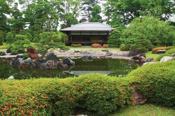 """K. Ptakausko knygoje """"Ryto rasos sodas"""" - visi japoniško sodo perlai"""