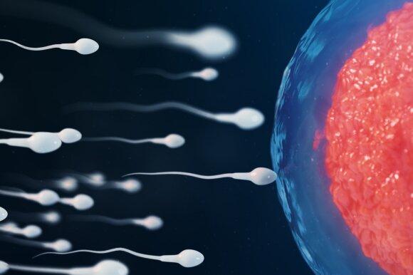 JAV sukurta nauja kontracepcijos priemonė.