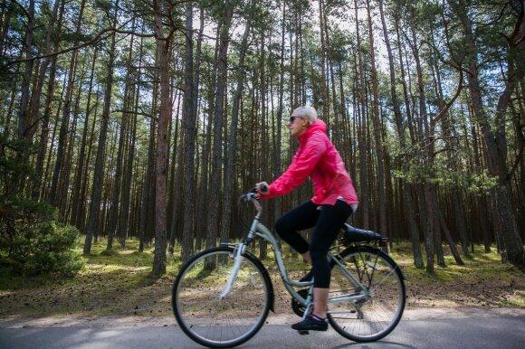 Велосипедисты невнимательными называют водителей, однако своей вины не усматривают