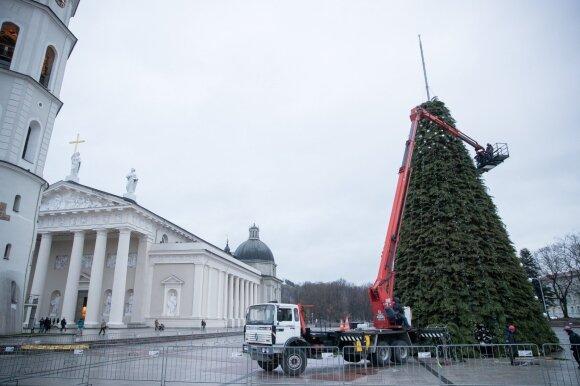 Vilniaus centre jau stovi eglutė: žada, kad bus daug šviesų
