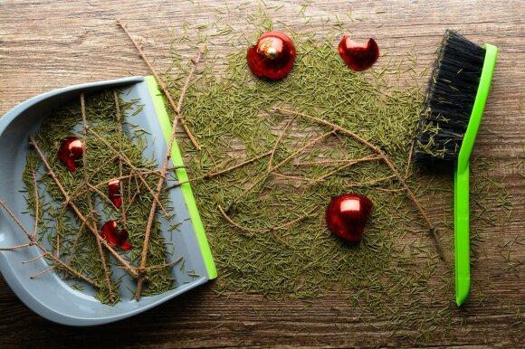 Kalėdinės eglutės spygliai