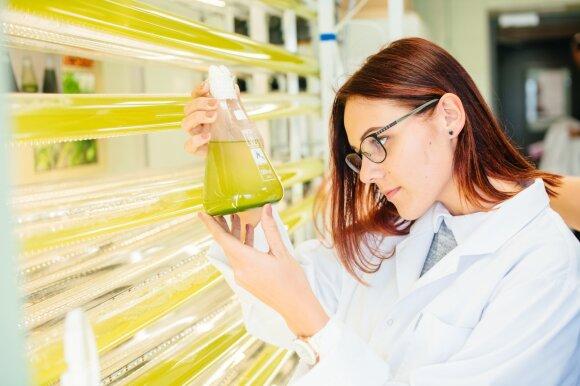 VDU Žemės ūkio akademijos laboratorijos