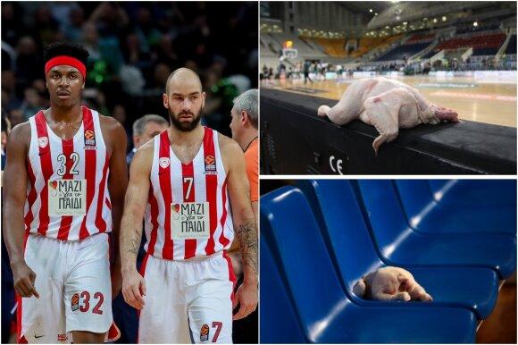 """Olympiakos"", višta"