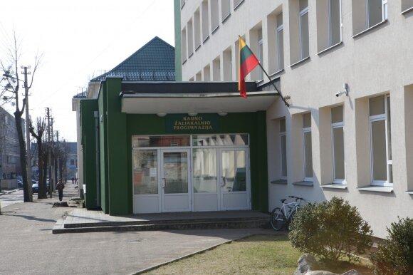 Žaliakalnio progimnazija Kaune