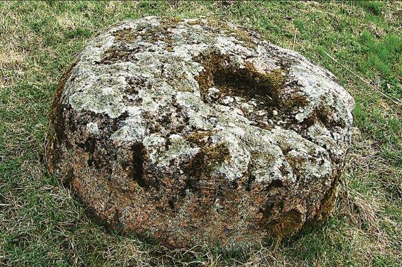 Apeiginis akmuo su plokščiadugniu dubeniu // Juliaus Kanarsko nuotr., 2012 m.