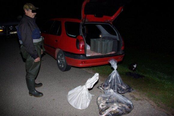 Žvejo verslininko sugauti unguriai