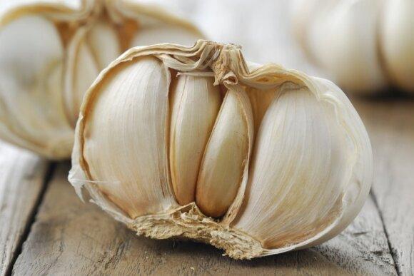 7 maisto produktai, kurių negalima duoti augintiniams