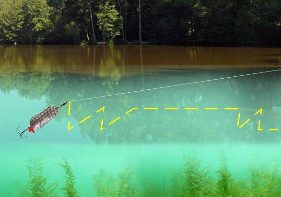 Žvejybos blizge schema