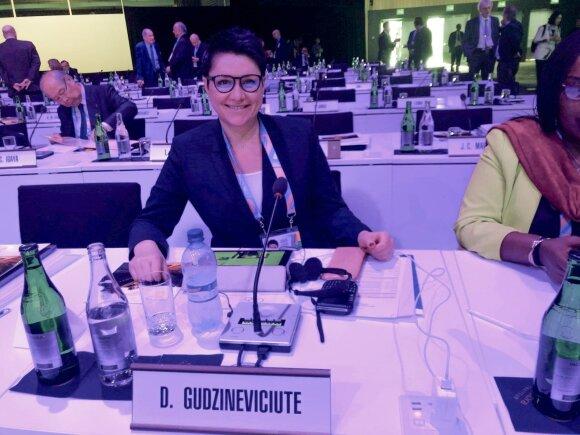 Daina Gudzinevičiūtė sėdi prieš TOK sesiją