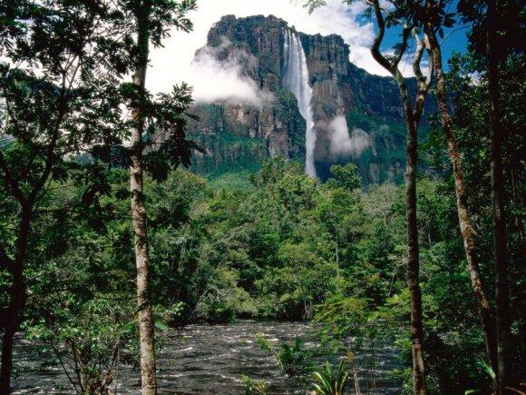 Anchelio krioklys, Venesuela