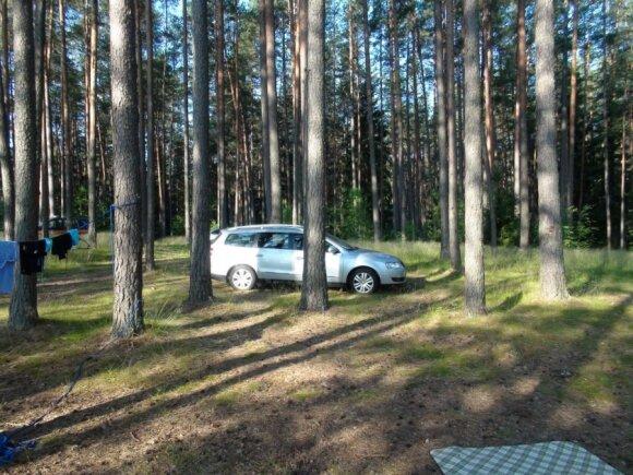 Miške stovintis automobilis