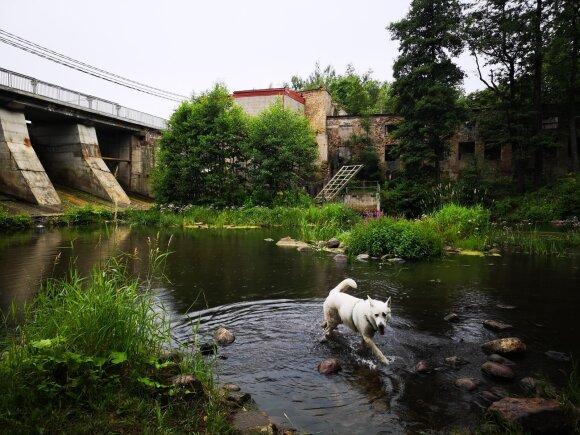 Каунасец предложил уникальный маршрут: пешком из Вильнюса в Каунас