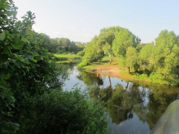 Dubysos upė Ariogaloje