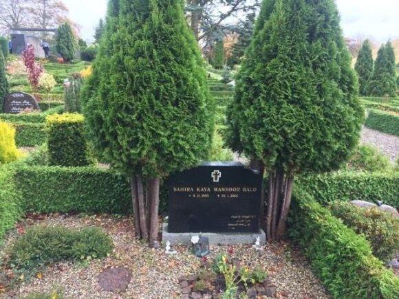 Tik senesniuose kapuose yra kiek erdviau vietos ir auga nemaži augalai kaip šios tujos.