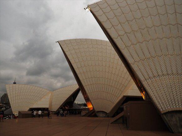 Australijoje taksisto apgaulę patyręs lietuvis turi patarimą: kalbėkite su jais kaip Šarūnas Jasikevičius per minutės pertraukėlę