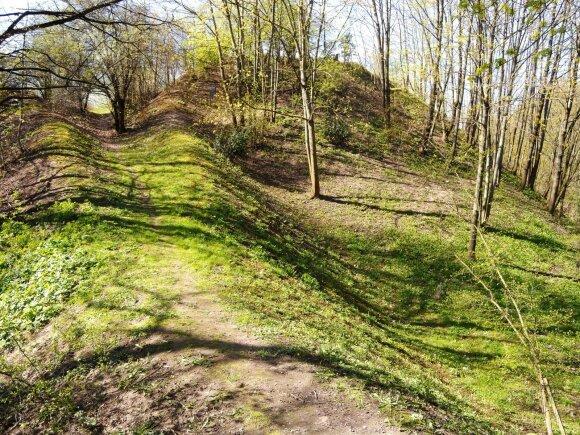 40-ties karių didvyrišką žūtį 1382 m. menantis Eigulių piliakalnis kol kas dunkso gerokai apleistas ir užmiršas.