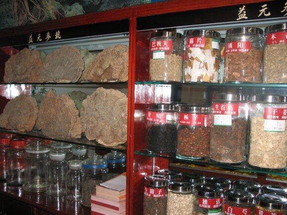 Tradicinė kinų medicina 2 dalis/ Raimondo Dikčiaus nuotr.