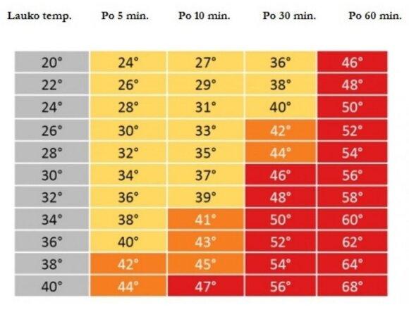 Temperatūra automobilyje