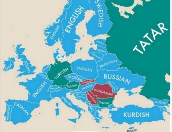 Najpopularniejszy drugi język