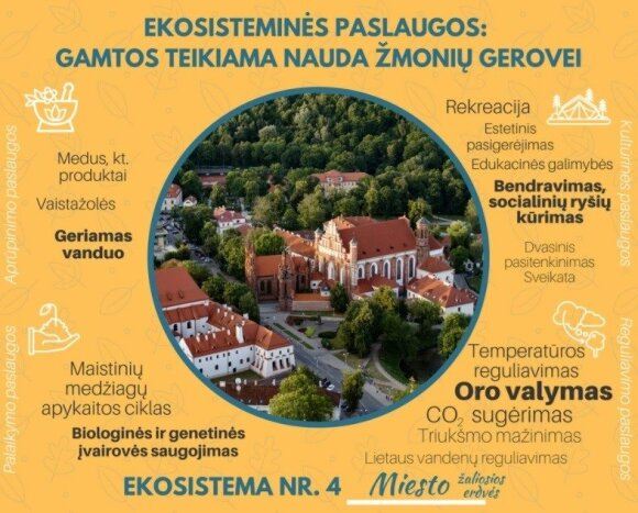 Miesto ekosistemos