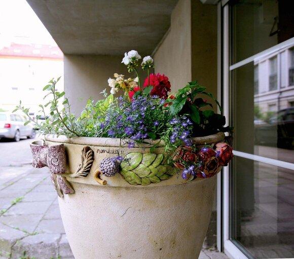 Gėlės ant vazono apvado dera su pasodintomis gyvomis