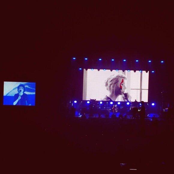 Земфира выругалась на концерте в Вильнюсе, увидев украинский флаг в зале