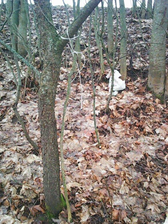 Per pėsčiųjų žygį – kraupus radinys miške
