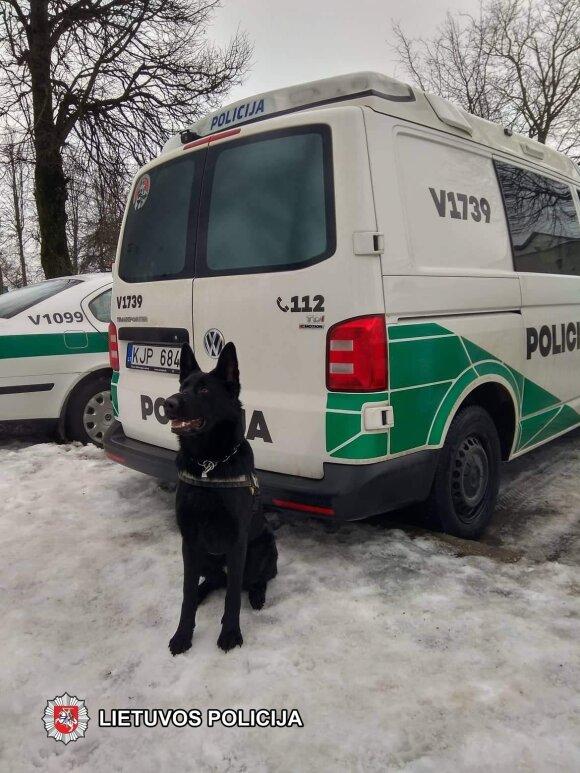 Tarnybinio šuns uoslė neapgavo – automobilyje rasta narkotinių medžiagų