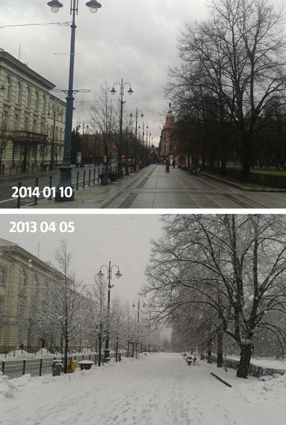 Gamtos pokštai sostinėje: pavasarį sninga, žiemą žolė žaliuoja
