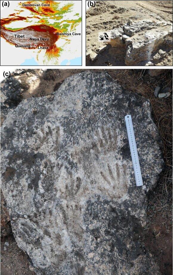 Dabar kalkakmenyje išlikę įspaudai yra vieni anksčiausių įrodymų, kad šioje vietovėje, esančioje netoli kaimo Quesang, kadaise gyveno žmonių protėvių. Matthew Bennett nuotr.