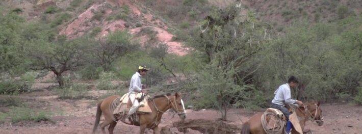 A. Juknevičius: tai buvo vyriškas ir tikras Dakaras