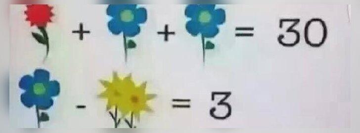 Naujas matematinis galvosūkis verčia internautus sukti galvas