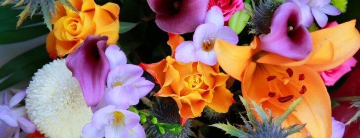 """<span style=""""color: #ff0000;"""">VIDEO:</span> kaip nudažyti gėles maistiniais dažais"""