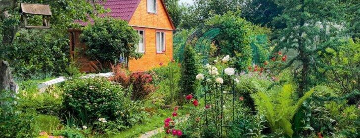 Aplinkos kūrimas (5): meniška netvarka – efektinga