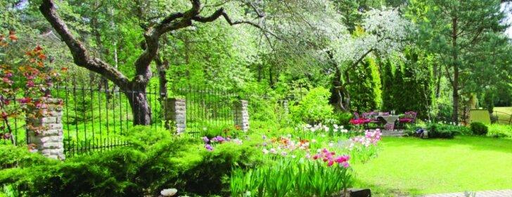Angliško stiliaus sode – nuolat kintantis žiedų paveikslas