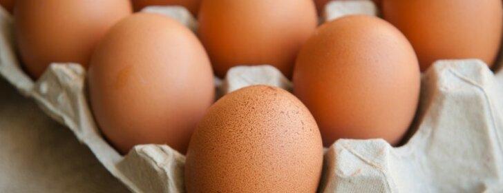 Į žemę užkaskite kiaušinį – rezultatai jus nustebins