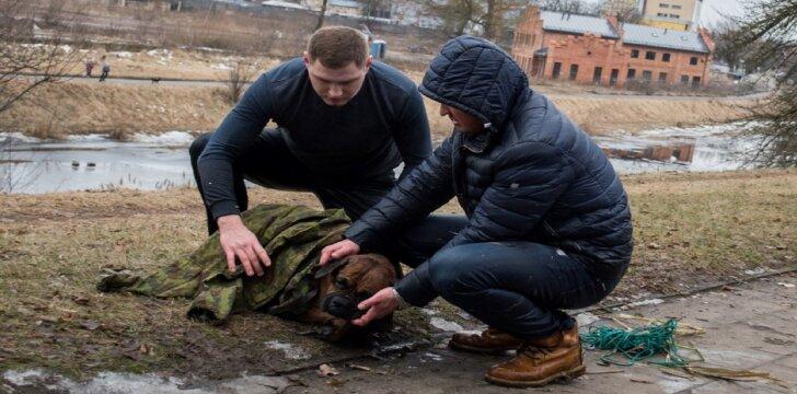 Du vyrai išgelbėjo šunį