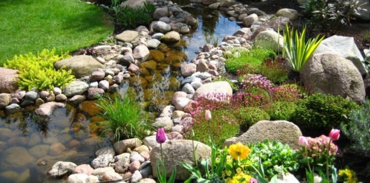 Praktiniai alpinariumų patarimai: kaip paruošti vietą augalams