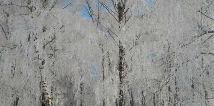 Kaip pasirūpinti atopiška oda einant į lauką šaltuoju metu?