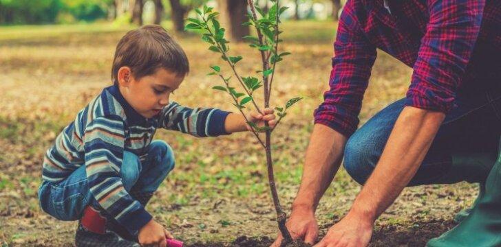 7 skirtumai tarp įprastų ir išmintingų tėvų