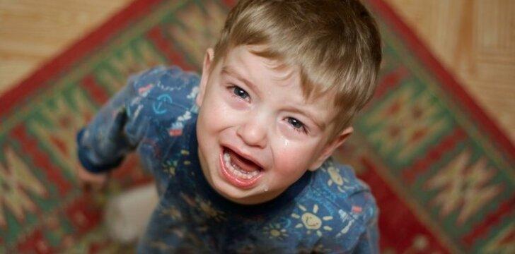 Visuomenę šokiravo istorija apie aukles, kankinusias vaikus