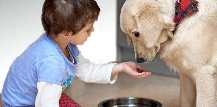 Šuo moka skaityti iš suaugusiojo akių taip, kaip mažametis vaikas.