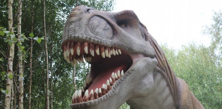 """Karšti įspūdžiai iš lietuviškojo dinozaurų parko <sup><span style=""""color: #ff0000;"""">foto</span></sup>"""