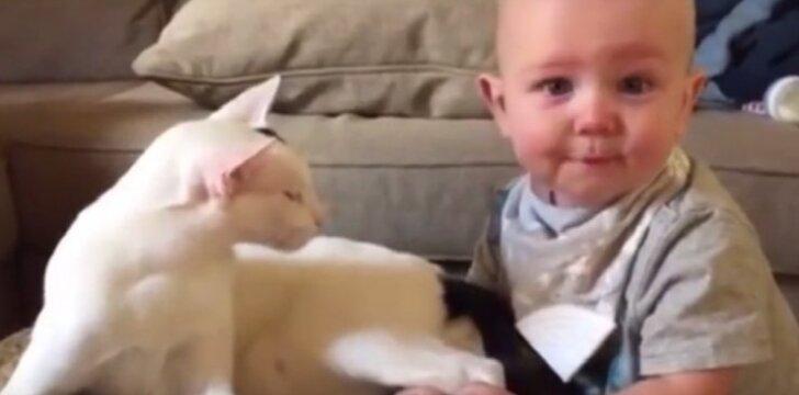 Katinas Lemsie ir kūdikis