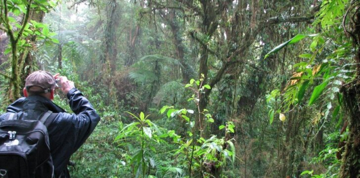 Mokslininkai tyrinėja atogrąžų miškus, nes juose daugybė iki šiol dar neįmintų gamtos paslapčių (nuotraukoje – Saimonas fotografuoja rūkų mišką Kosta Rikoje) / Prof. J. R. Stonio nuotr.