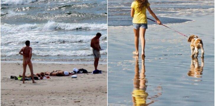 Šunys ir nudistai - viename paplūdimyje