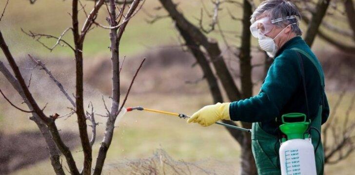 Pavasarinis augalų purškimas gali tapti iššūkiu – štai ką turite žinoti