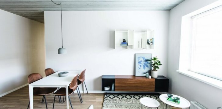 53 kv.m butas Vilniuje: lengvos prabangos kupinas interjeras