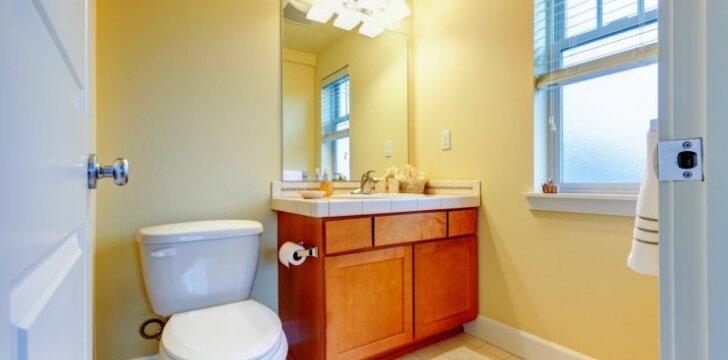 Patarimai, kaip įrengti ir atnaujinti vonios kambarį (1 dalis)