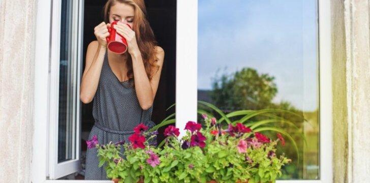 """Gydytis nealinant organizmo padės ir populiari <span style=""""color: #ff4040;""""><strong>balkonuose auginama gėlė</strong></span>"""